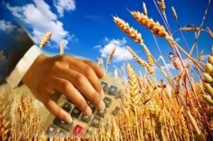 термобелье способно проблемы ценообразования в ростовской области будьте